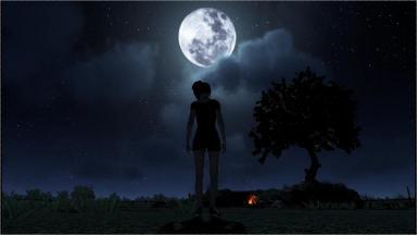 夜が更けた森林の奥
