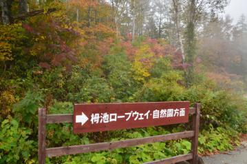 雨飾山_013