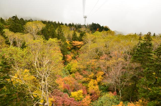 雨飾山_040