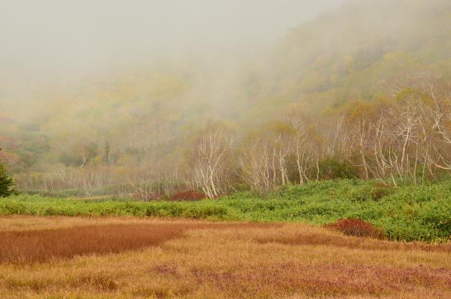 雨飾山_095