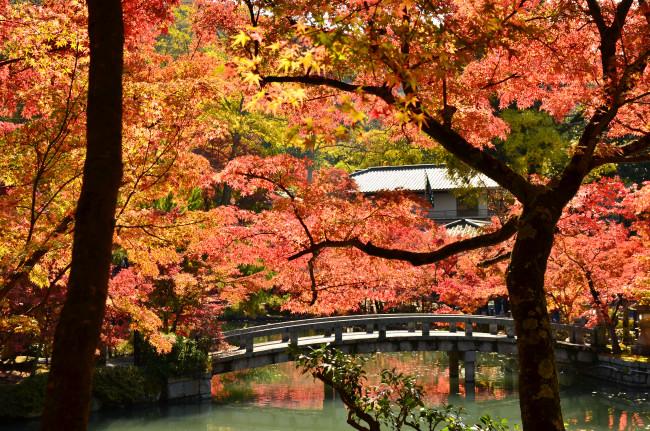 京都大阪_0332