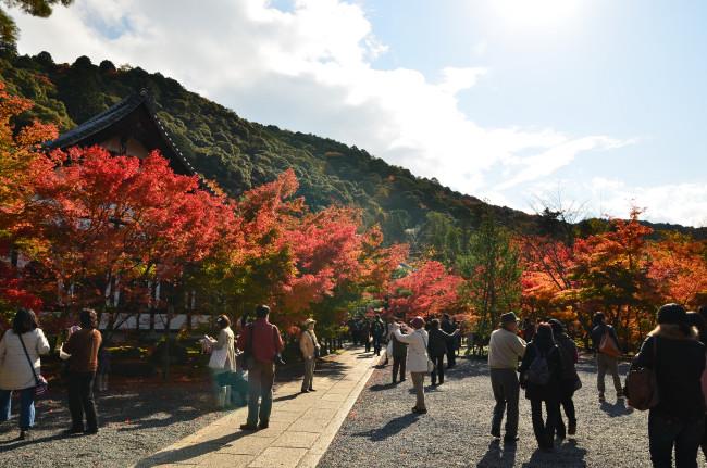 京都大阪_0318
