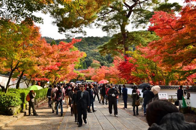 京都大阪_0313