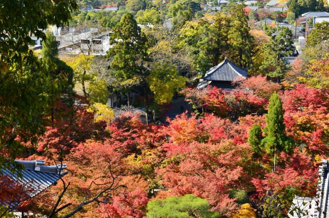京都大阪_0366