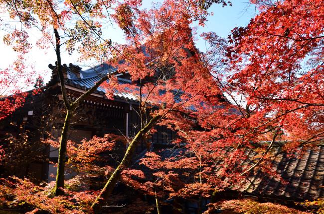 京都大阪_0359