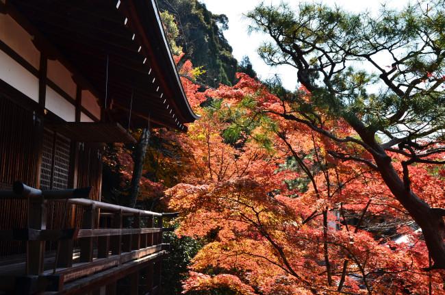 京都大阪_0362