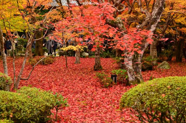 京都大阪_0482