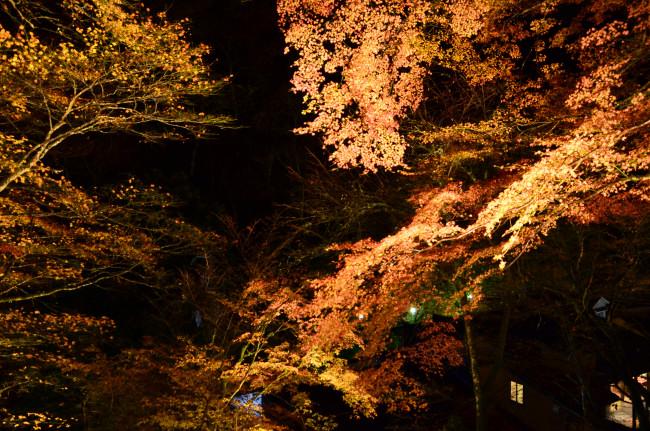 京都大阪_0608