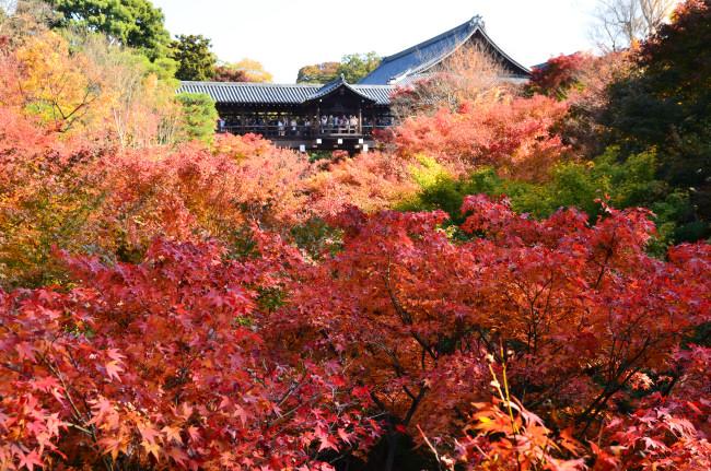 京都大阪_0951
