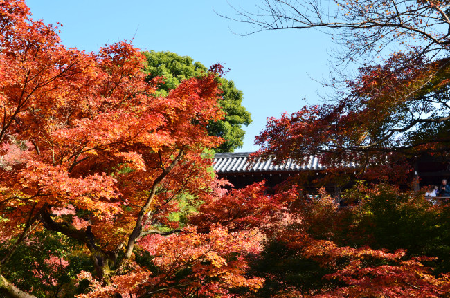 京都大阪_0907
