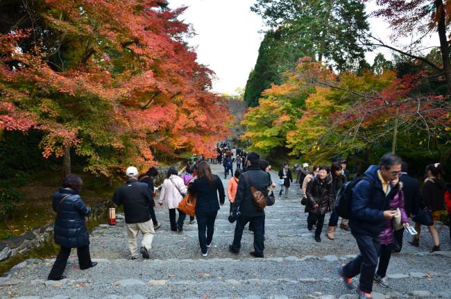 京都大阪_1039