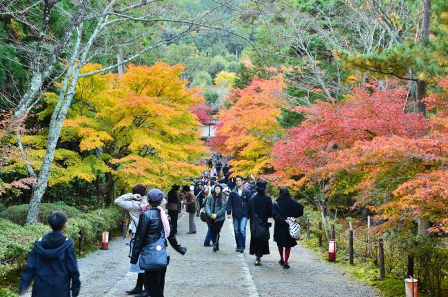 京都大阪_1029