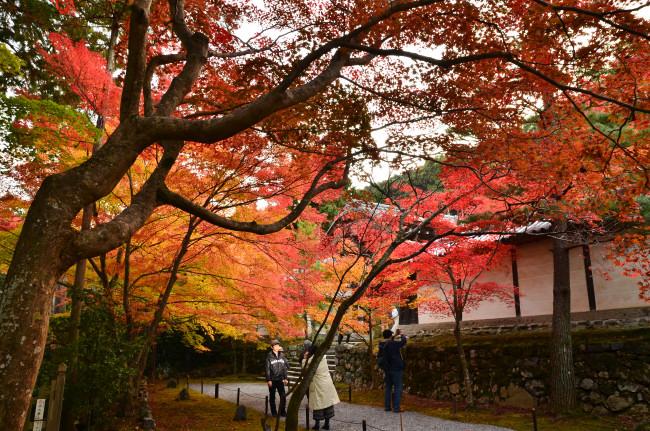 京都大阪_1074