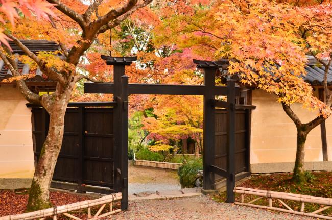 京都大阪_1067