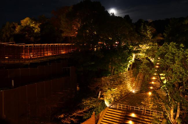 京都_0483
