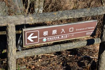 竜ヶ岳_0004