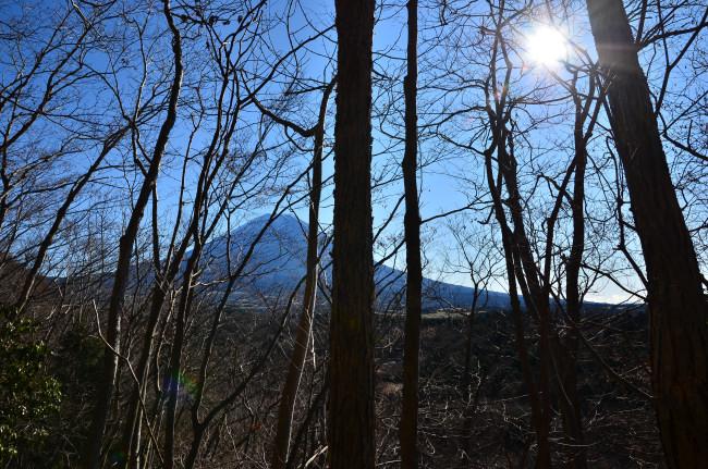 竜ヶ岳_0011