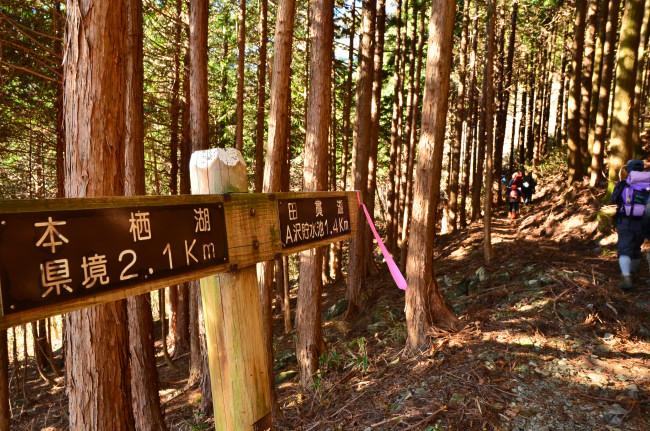 竜ヶ岳_0016