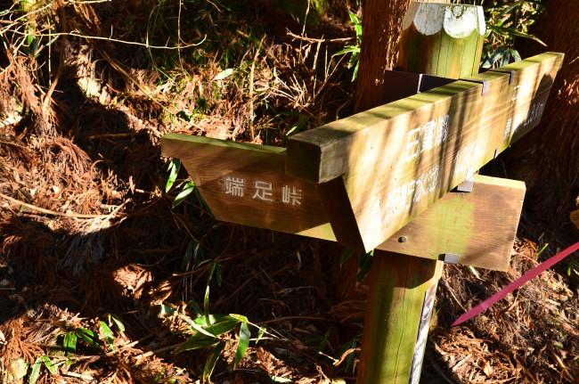 竜ヶ岳_0018