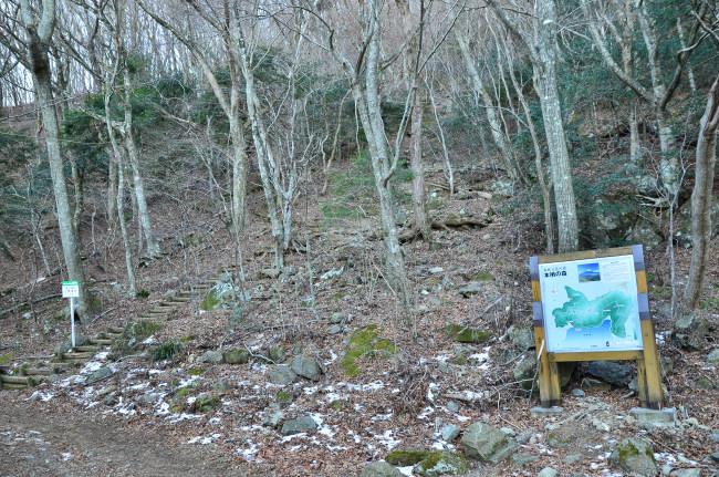 竜ヶ岳_0157