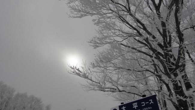 ブログ用蔵王TX5_0050