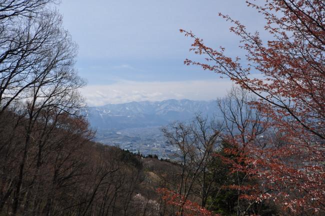 美の山_0083