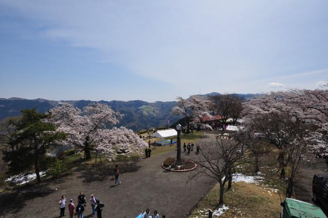 美の山_0104