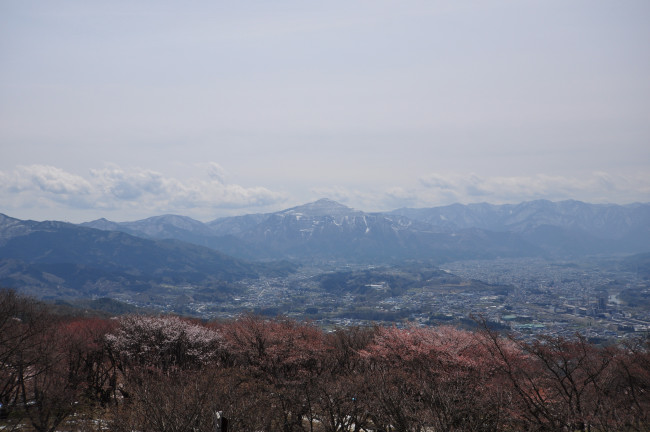 美の山_0138