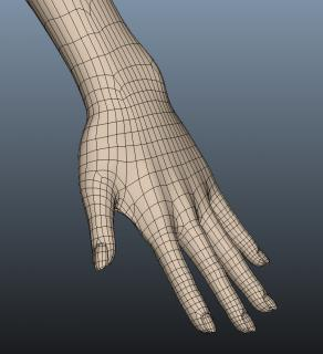 hand_001.jpg