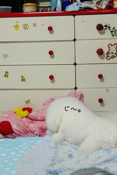 117_20121004010100.jpg