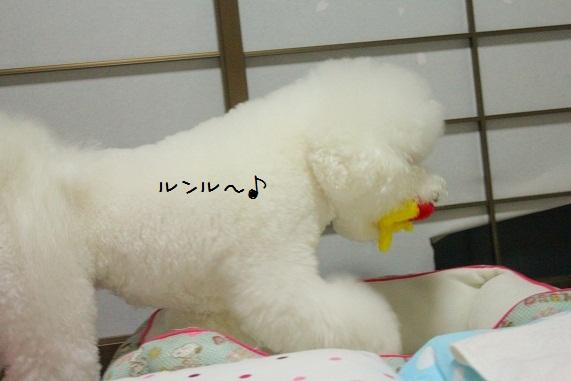 123_20121004010801.jpg