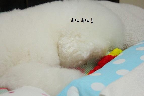 124_20121004010801.jpg