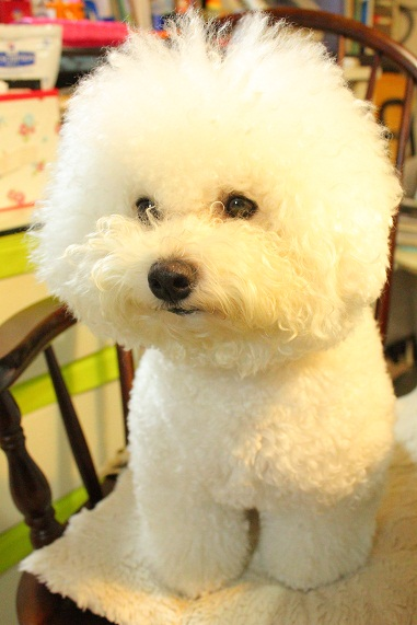 12_20120831011429.jpg