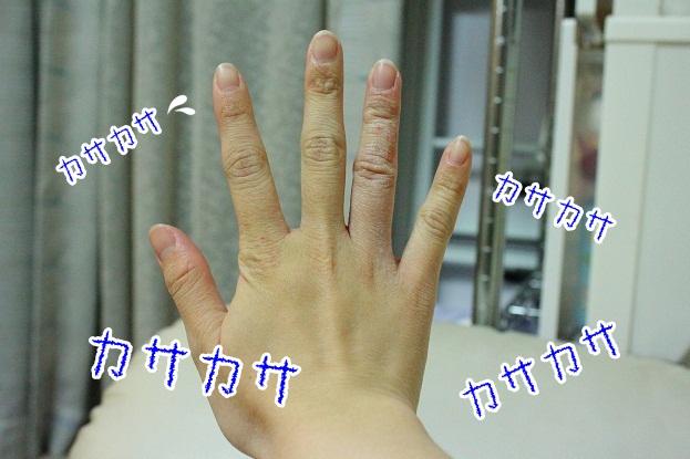 1_20121125223931.jpg