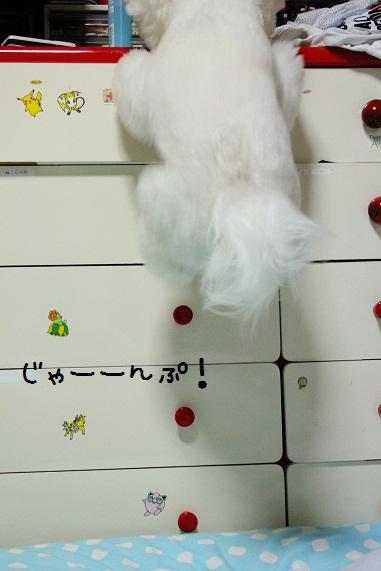 23_20121018004130.jpg