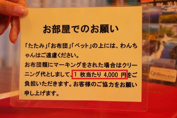 6_20121023010638.jpg