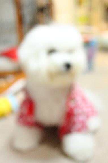 96_20120702001235.jpg