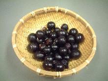 jabotikabafruit.jpg