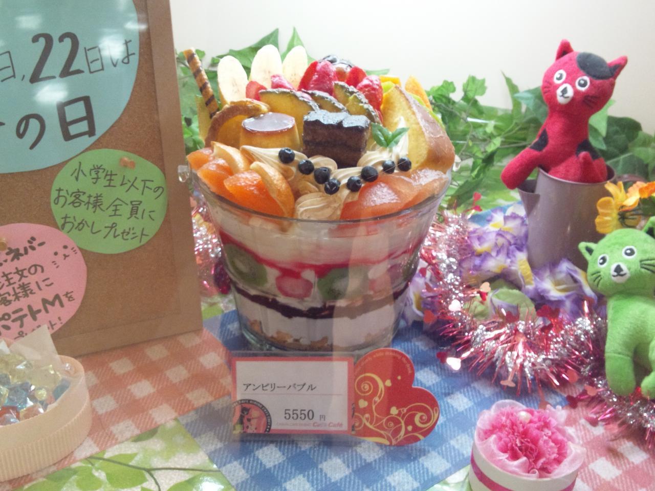 キャッツカフェ横浜都筑(ショウウィンドウ)