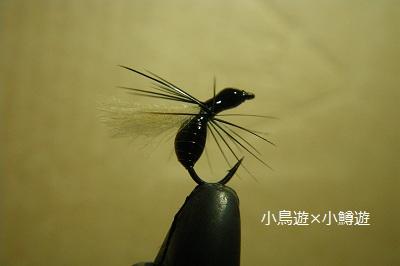 IMGP0407_20120828195243.jpg