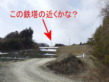 taruda4.jpg