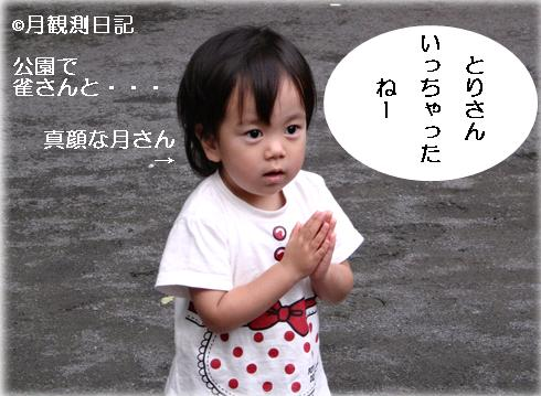 20120623tsuki1.jpg