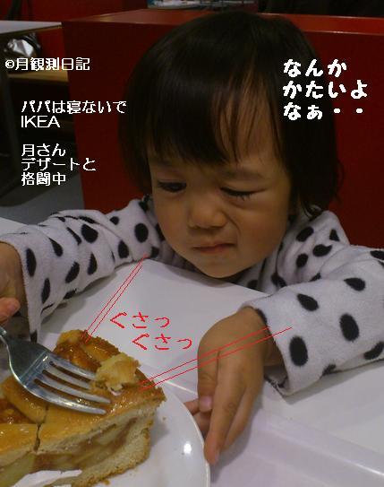 20121120tsuki1.jpg