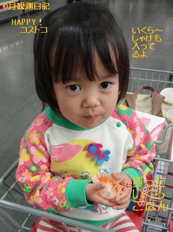 20130130tsuki1.jpg