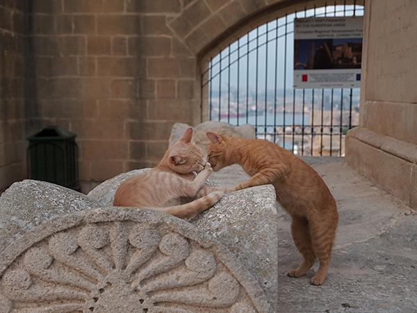 Valletta_06
