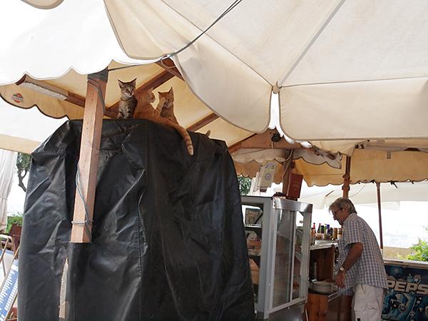 Valletta_19