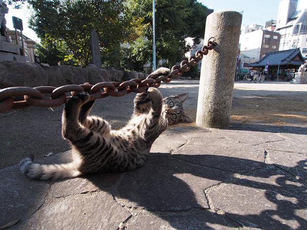koma_climbing_02
