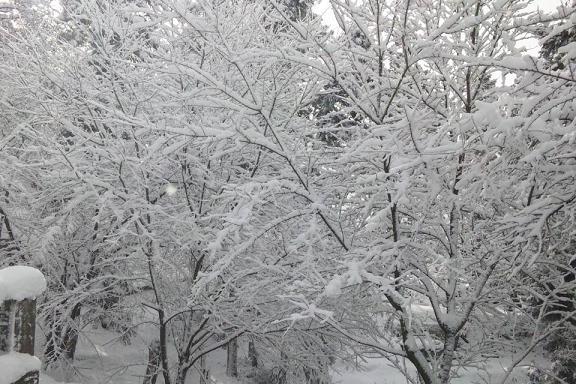飯盛山雪景色