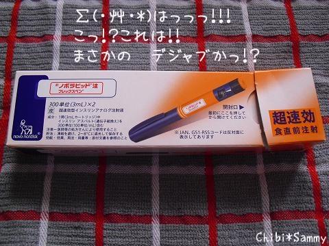 2012_10_26_ICHIGATA_Syuukakusai013_mob.jpg