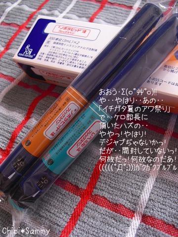 2012_10_26_ICHIGATA_Syuukakusai015_mob.jpg